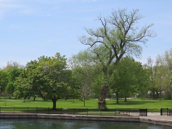 Toronto Islands: Parkland at Centre Island