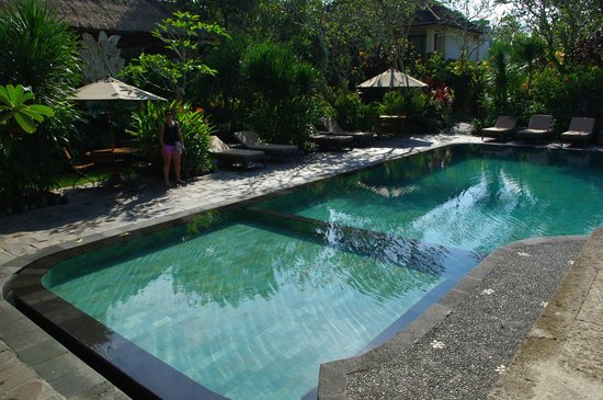 Sri Ratih Cottages : Swimming Pool - shade and sun areas.