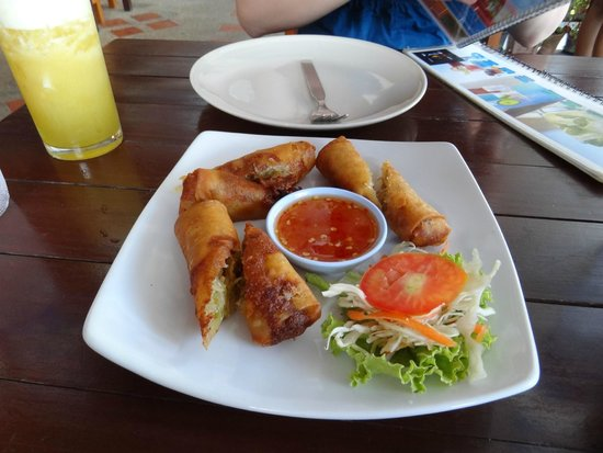 Massaman Restaurant & Bar: Spring rolls