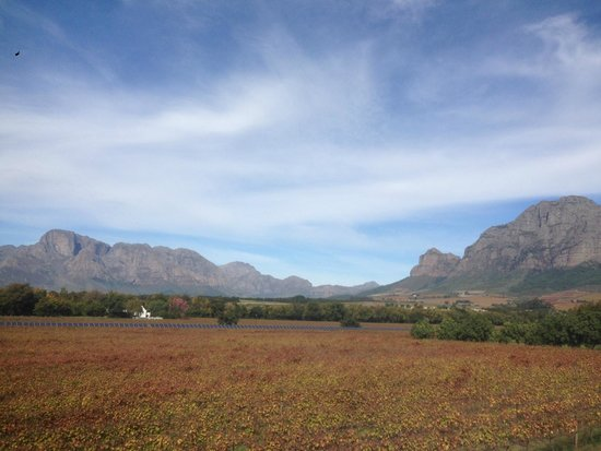 Vrede en Lust Winery: Beautiful