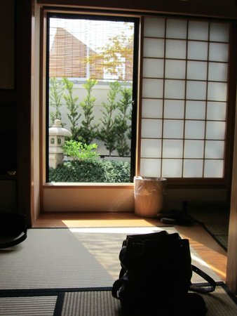 The Edo Sakura : Good morning view!
