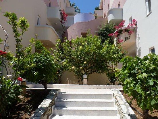 CHC Athina Palace Resort & Spa : Лестницы и растительность отеля