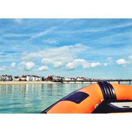 Dover Sea Safari: Deal
