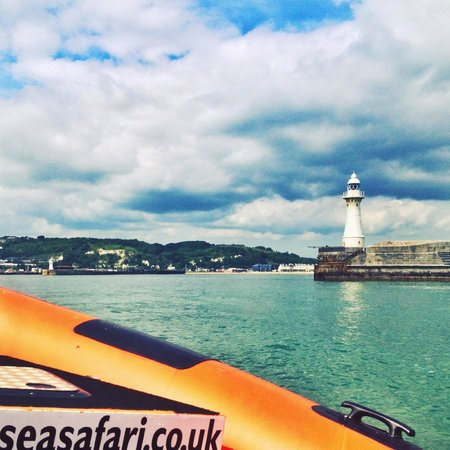 Dover Sea Safari : Dover Harbour