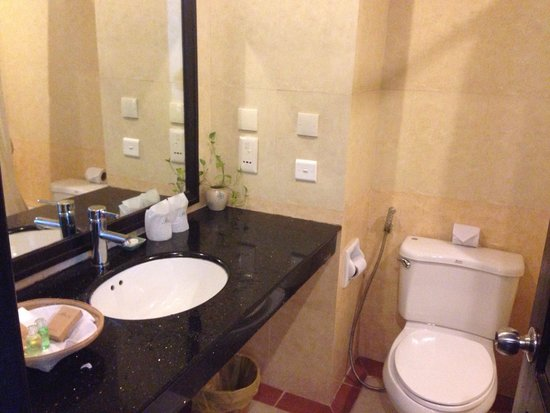 Angkor Riviera Hotel: Bathroom with a cricket trapped
