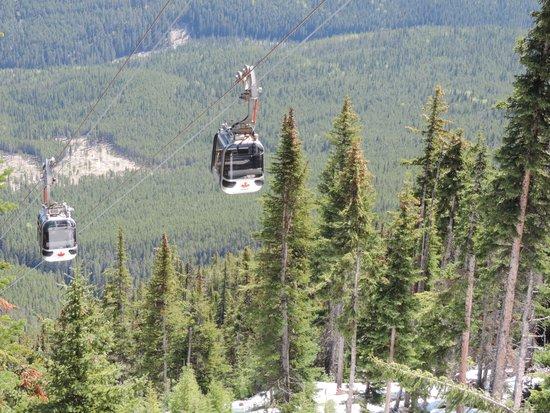 Buffalo Mountain Lodge : Banff Gondola