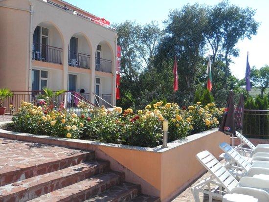 Hotel Hera: Розы кругом - шарман