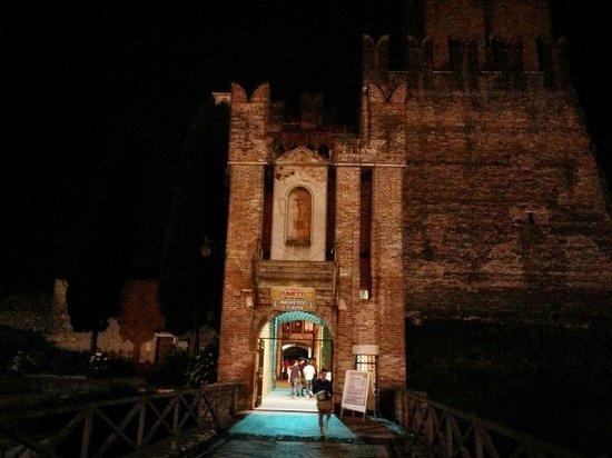 Castello scaligero di Villafranca: Ingresso di sera