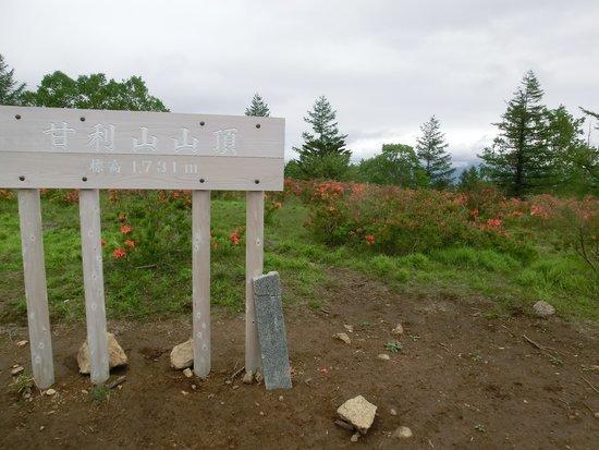 Mt. Amari: 山頂