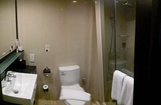 Royal Plaza on Scotts: bath room