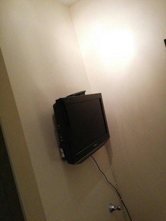 New Steine Hotel : Tv