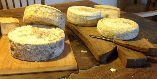Stancija Kumparicka: we invite you to taste our cheese, you can also prepare it by yourself