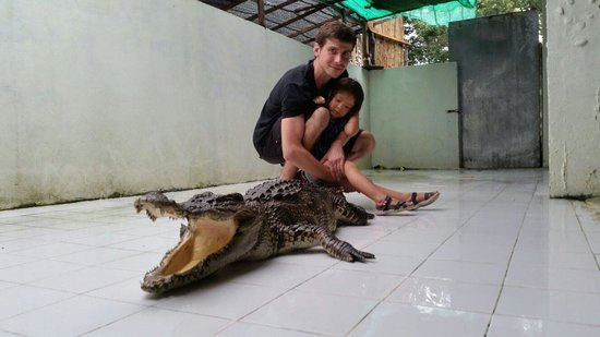 Crocodile & Snake Show Koh Chang: Little scared but got some close experience with the Crocodile