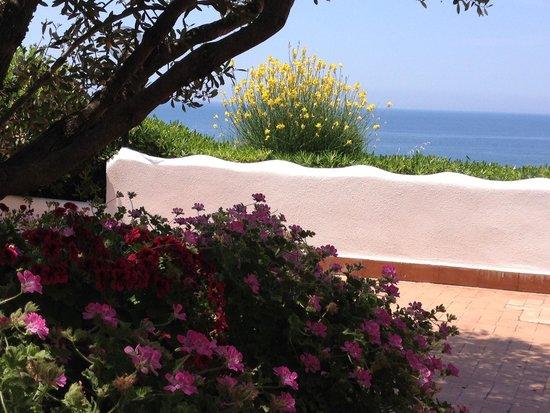 Villaggio degli Olivi: La terrazza della colazione