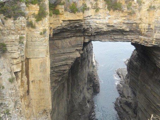 Tasman National Park: Damien peter Auksorius at Tasman arch