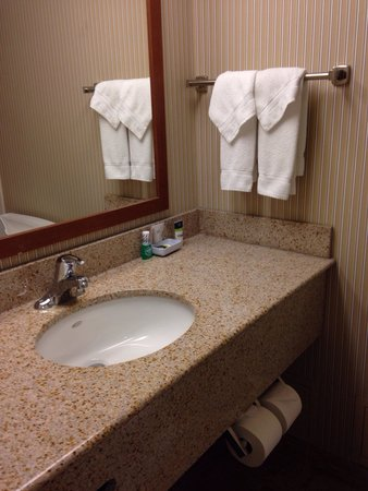 Four Points by Sheraton Toronto Airport : Bathroom Room 526