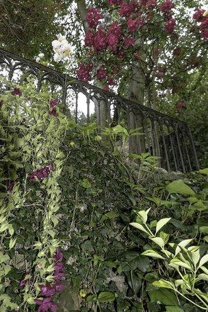 Rose du jardin deden picture of le jardin d 39 eden for Le jardin d eden
