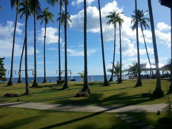 Kuting Reef: Sunny