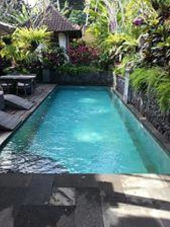 Bidadari Private Villas & Retreat: Lap pool at the entrance.  The massage table is located just on the farsight of the pool