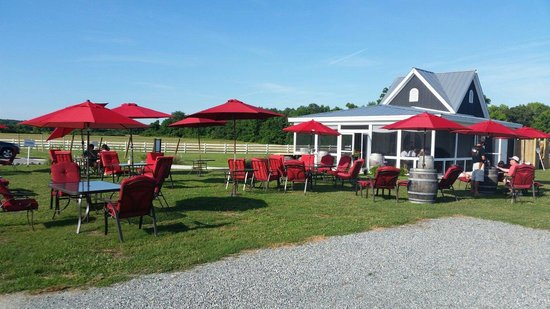 The Dog and Oyster Vineyard: Oysters and wine venue