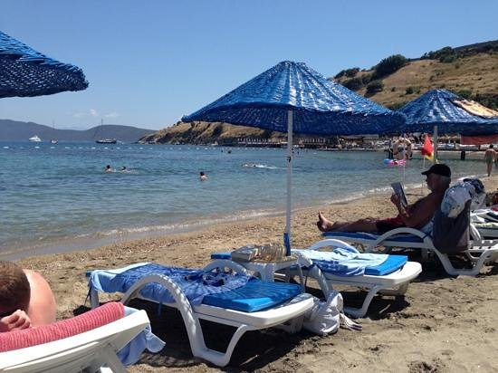 Dolce Bodrum Hotel and Beach club: the beach