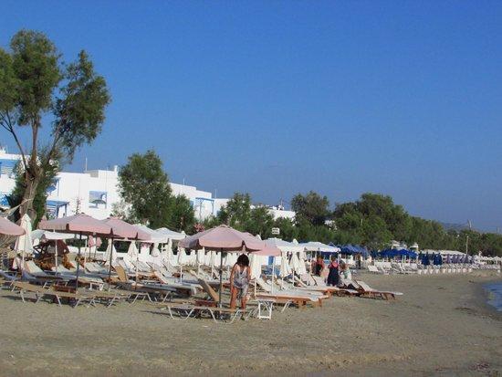Saint George Hotel: stranda