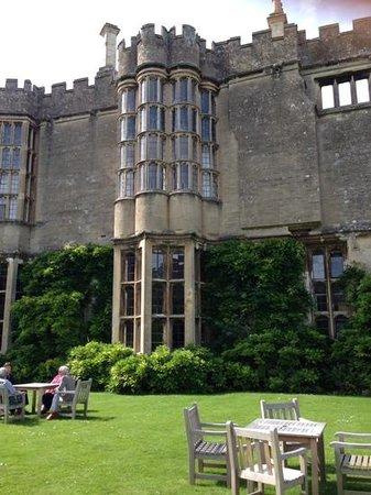 Thornbury Castle and Tudor Gardens: the wonderful windows