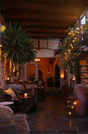 Vinnies' Garden: Front Bar