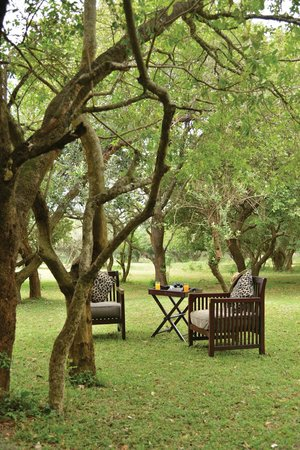 Falaza Game Park & Spa : outside view from your tent