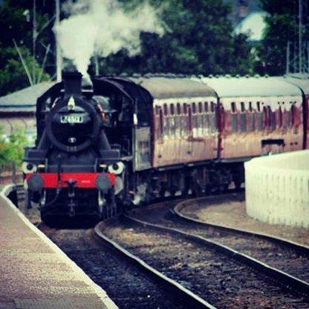 Strathspey Steam Railway: Choo Choo