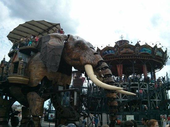 Résid'Spa - Loire & Sèvre : Les Machines de l'Ile - L'éléphant