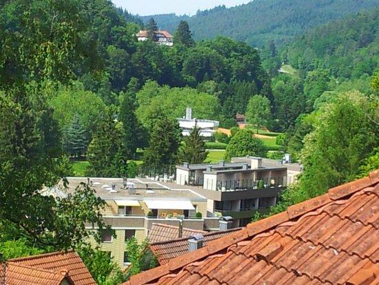 Hotel Bad Herrenalb : Blick vom Balkon