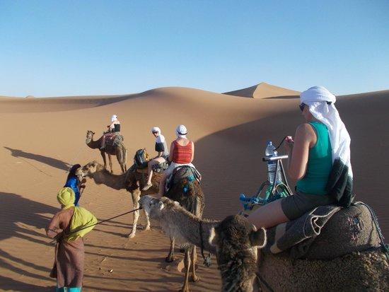 Arib Voyages Day Tours : le désert...