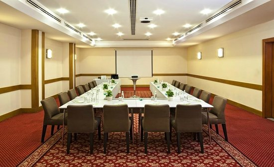 Point Hotel Taksim : Petra Meeting room