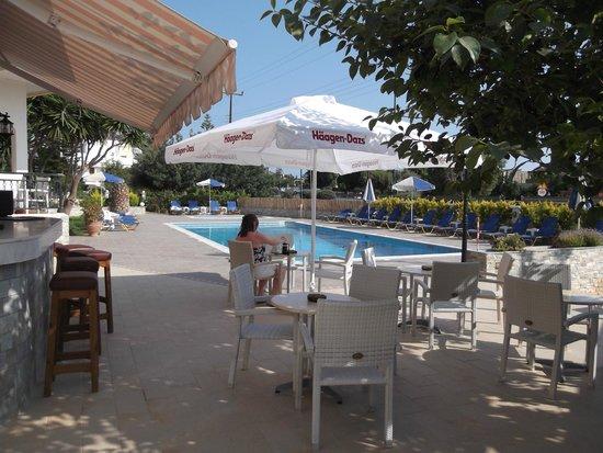Villa Ritsa : Shaded bar area