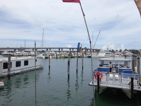 Bayside Marketplace : Vista
