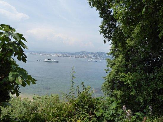 Île Sainte-Marguerite : Panorama