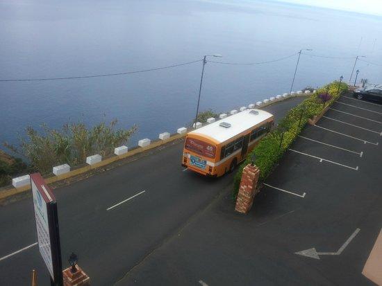 Ocean Gardens: Bus
