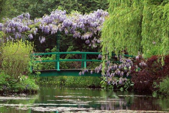 Les fleurs des jardins de monet photo de maison et - Les jardins de claude monet ...