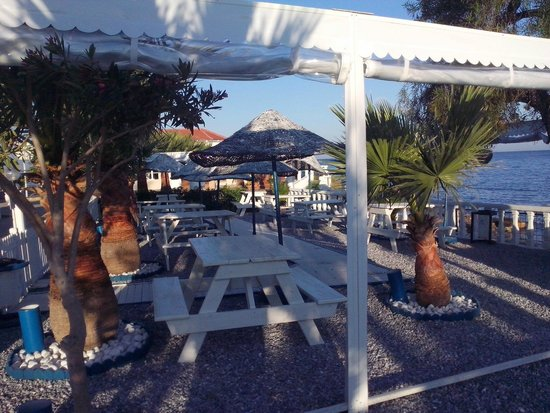Club Tarhan Beach Hotel : The fish restourant