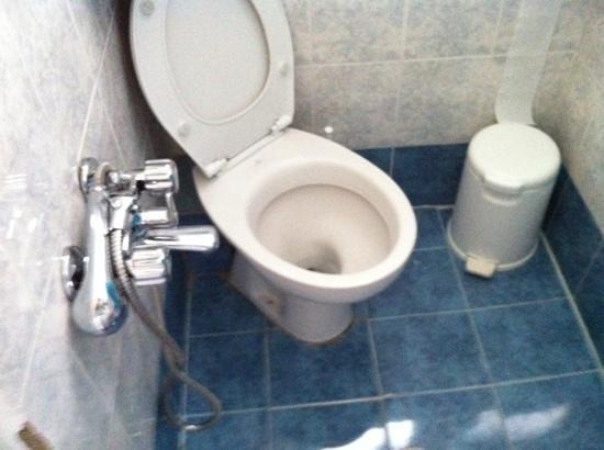 Babis Hotel: Shower