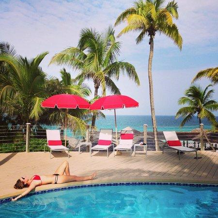 Coral Sands Hotel: Coral Sands pool