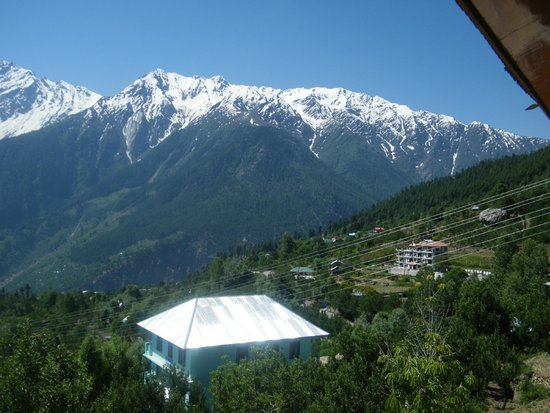 Hotel Kinner Kailash (HPTDC) : View from the room