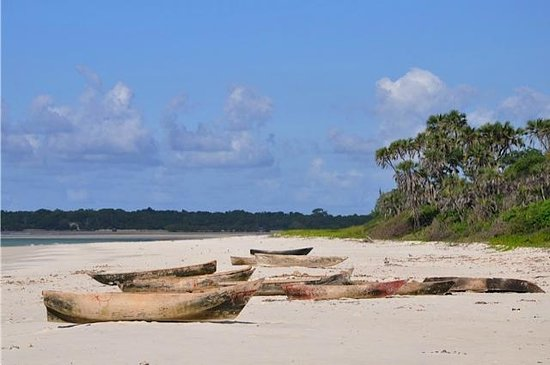 Ras Bamba Eco Lodge : Strand