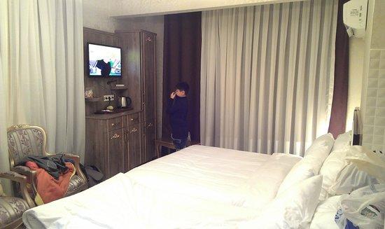 Haseki Sultan Suite House: room view