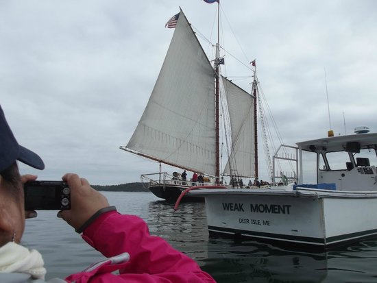 Schooner Stephen Taber Day Cruises : The Taber at anchorin StoneingtonHarbor