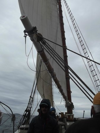 Schooner Stephen Taber Day Cruises: the sails of theTaber