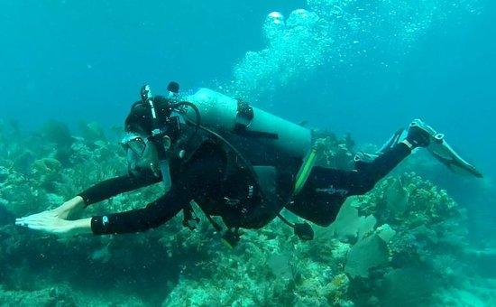 Silent World Dive Center: alot of fun!