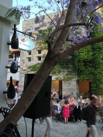 Hapimag Resort Sea Garden: Hapimag Bodrum Night- Under a Jacaranda tree...