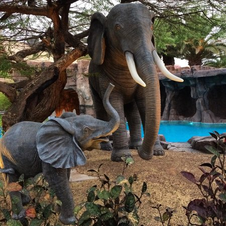 Lopesan Baobab Resort: Elephants